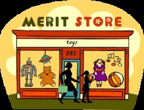 Merit Store